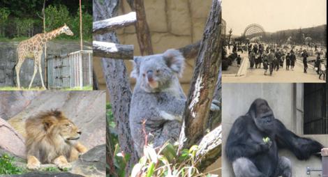 東山動植物園.png